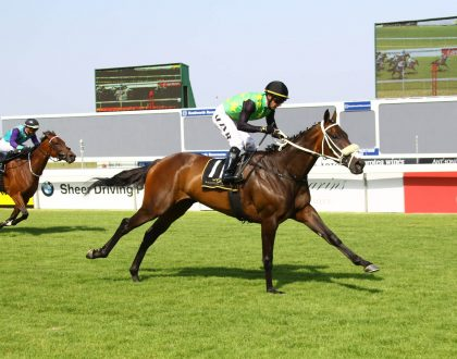 سباق الخيول في جنوب أفريقيا