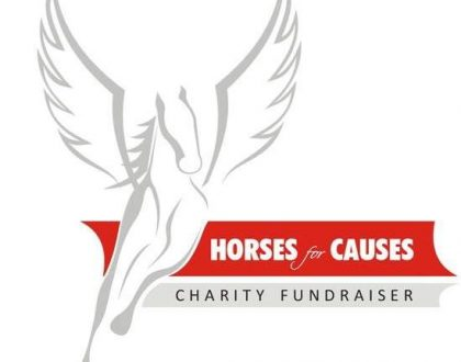 Horses For Causes 2019