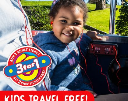 City Sightseeing 3 for 1