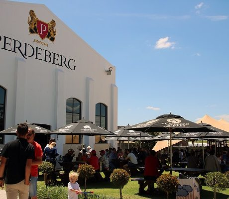 DISCOVER PERDEBERG