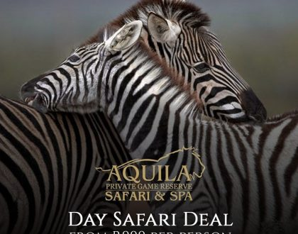 Aquila Day Safari Promo