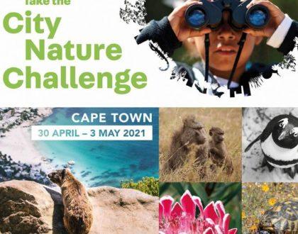 2021 City Nature Challenge